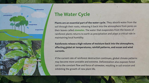 MathewTyler.co: Teaching: Water Cycle: CIwf3dHUYAAPeou