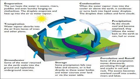 MathewTyler.co: Teaching: Water Cycle: CMTJU0wUEAIbKf1